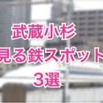 武蔵小杉周辺で子供が喜ぶ鉄道ビュースポット3選