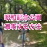 昭和記念公園で初めて遊ぶなら知っておきたい1つの満喫方法
